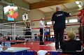 20131013_002_pldg_hws-centrum_fightboxing