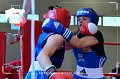 20140531_0154_pldg_centrum_hws-centrum_dni-dg_fight-boxing
